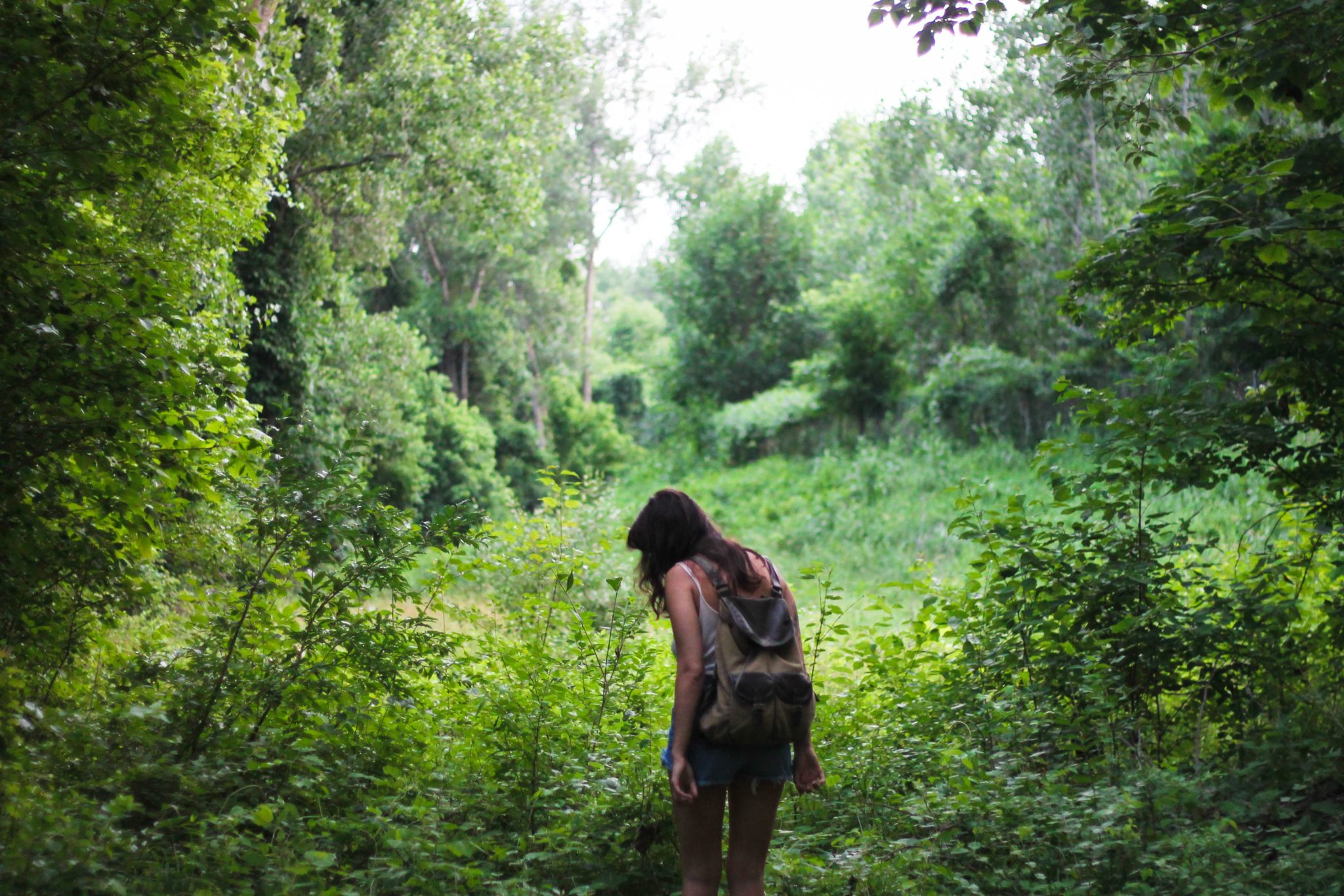 woman hiking in the woods during summer