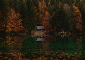 cabin on lake during fall allergies season